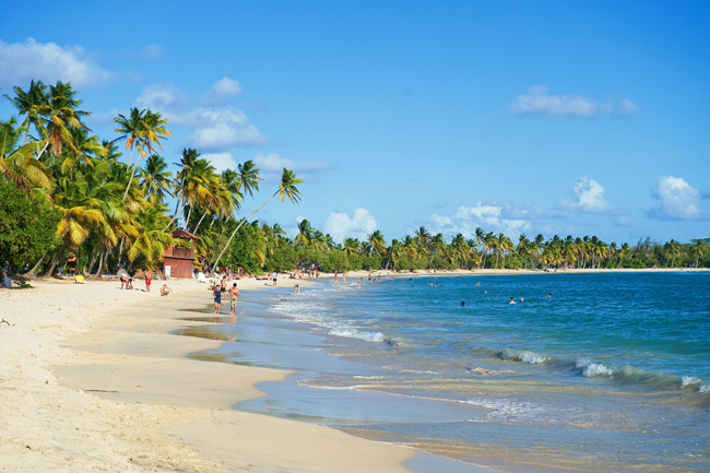 Martinique's Grande Anse des Salines beach.