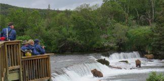 Visit Alaska's National Parks with John Hall's Alaska.