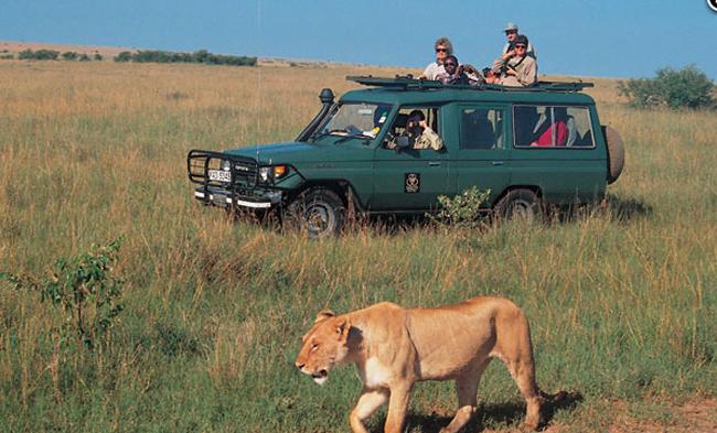 The Masai Mara Game Drive in Kenya.