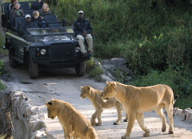 Travel to South Africa with African Travel, Inc.