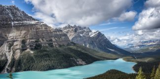 Travelers can learn to take nature photos with Canadian Photo Adventures, (Photo courtesy of: Canadian Photo Adventures.)