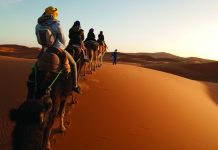 A camel ride is only one of many adventures on Kensington Tours' Morocco trip.