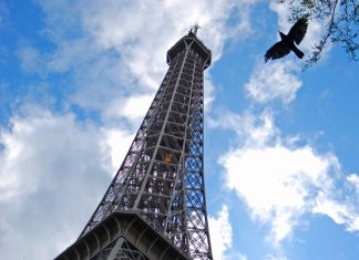 Guests have the opportunity to dine at the Eiffel Tower on Collette's Spotlight on Paris tour.