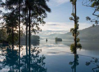 Ceylon Tea Trails's Summerville Bungalow pool overlooking Castlereagh Lake, in Sri Lanka