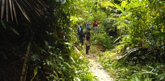 Trinidad and Tobago are working on a new initiative to establish or improve both islands' trails.