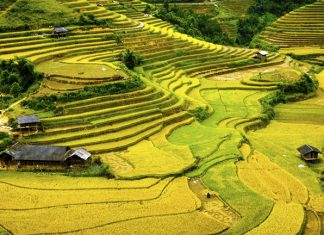 Kensington Tours'newVietnam Mountains & Islands itinerarytakesguests all the way from remote mountain villages to the country's white sand beach in 12 days.