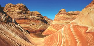 On Mayflower Tours' America's Canyon Country expedition, guests can peer into the Grand Canyon's enormous chasm.