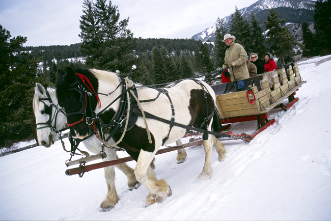 Montana's 320 Guest Ranch is offering fourwinter packages early next next.