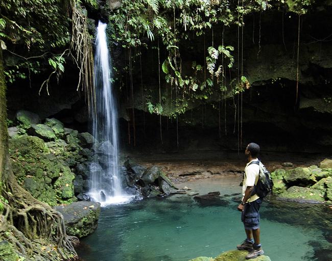 Emerald Falls, l'une des cascades les plus visitées de la Dominique. 1 500 touristes / j en saison.  Dominique.