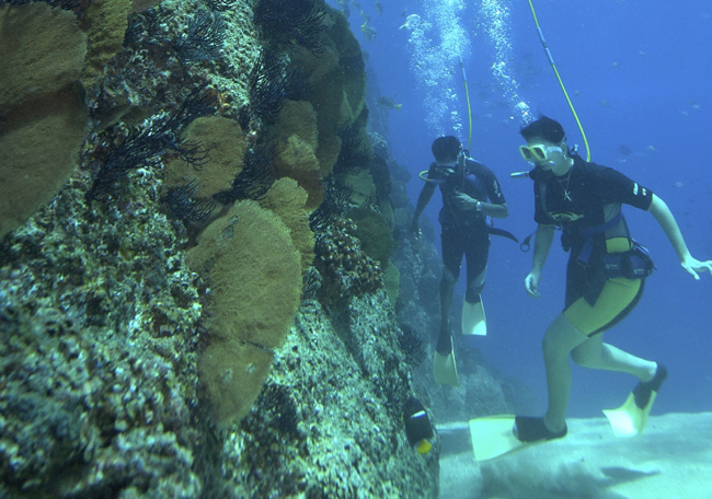 The Bavaro Splash snuba dive excursion in Punta Cana.