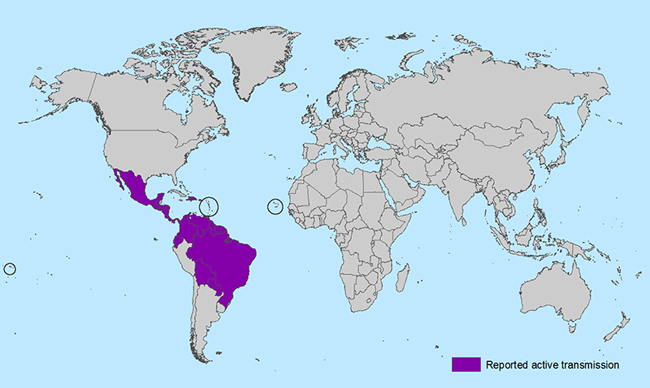 Countries and territories with active Zika virus transmission. (Photo credit: Centers for Disease Control and Prevention)