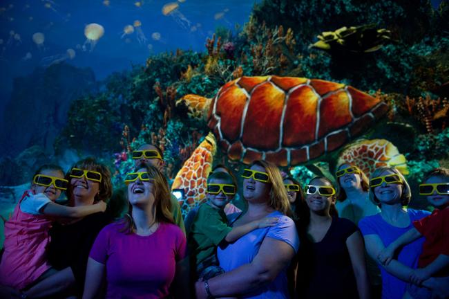Guests enjoying the TurtleTrek movie at SeaWorld Orlando.