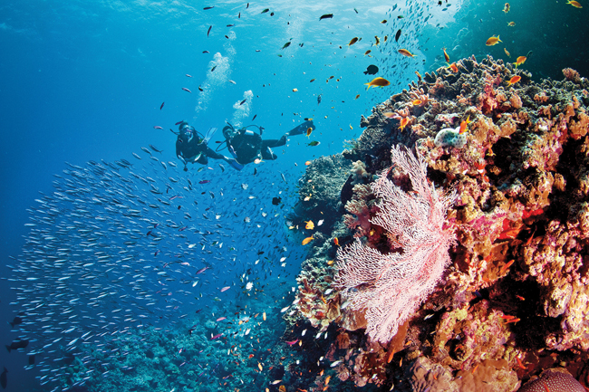 Silversea Expeditions' Scuba Diving Expedition Voyages take place in top diving sites, including Australia's Great Barrier Reef. (Photo credit: Tourism and Events Queensland)