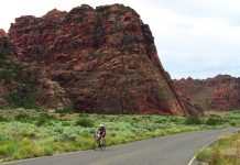 DuVine offers a bike tour in Zion National Park.