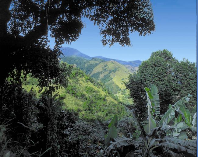 Mountains in Jamaica. (Photo credit: Ed Wetschler)