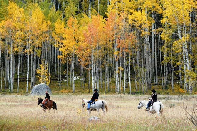 Vista Verde Guest Ranch's all-inclusive rates include guided activities such as horseback riding.