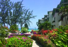 Pathway to the beach at Bougainvillea Beach Resort. (Paloma Villaverde de Rico)