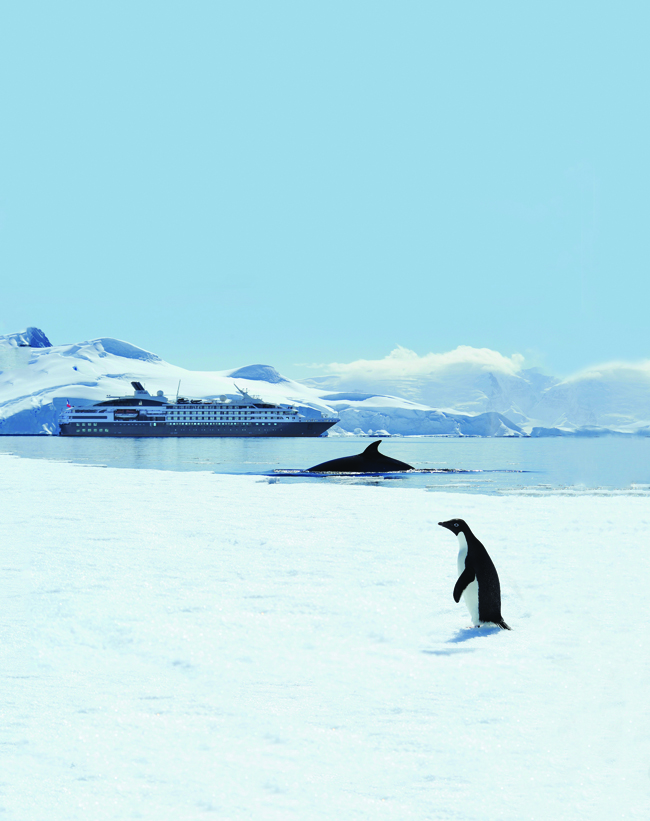 For 2017, Ponant is adding to its Antarctica sailings.