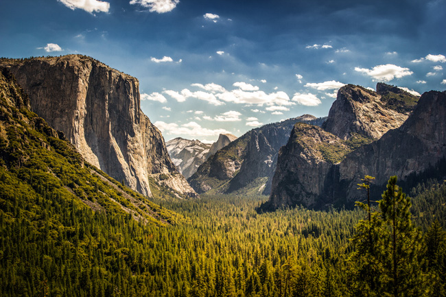 Amtrak Vacations has an itinerary that includes a visit to Yosemite.