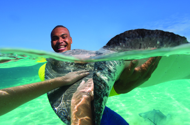 Swimming with rays at Stingray City.