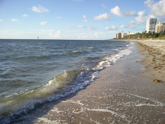 Beachside at The Ritz-Carlton, Key Biscayne in Miami.