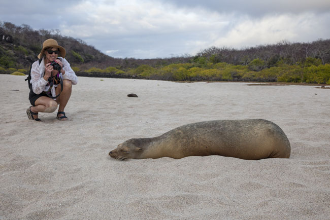 International Expeditions is offering its Oct. 7, 10-day Galapagos cruise at a discounted rate.