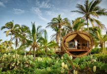 The eco-conscious Treehouse accommodations at Playa Viva.