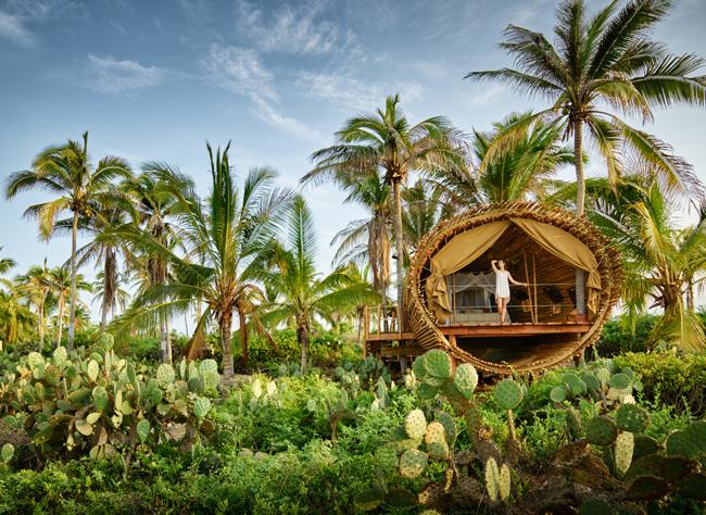 The eco-conscious Treehouse accommodations at Playa Viva.