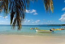Guadeloupe Islands Specialist-1