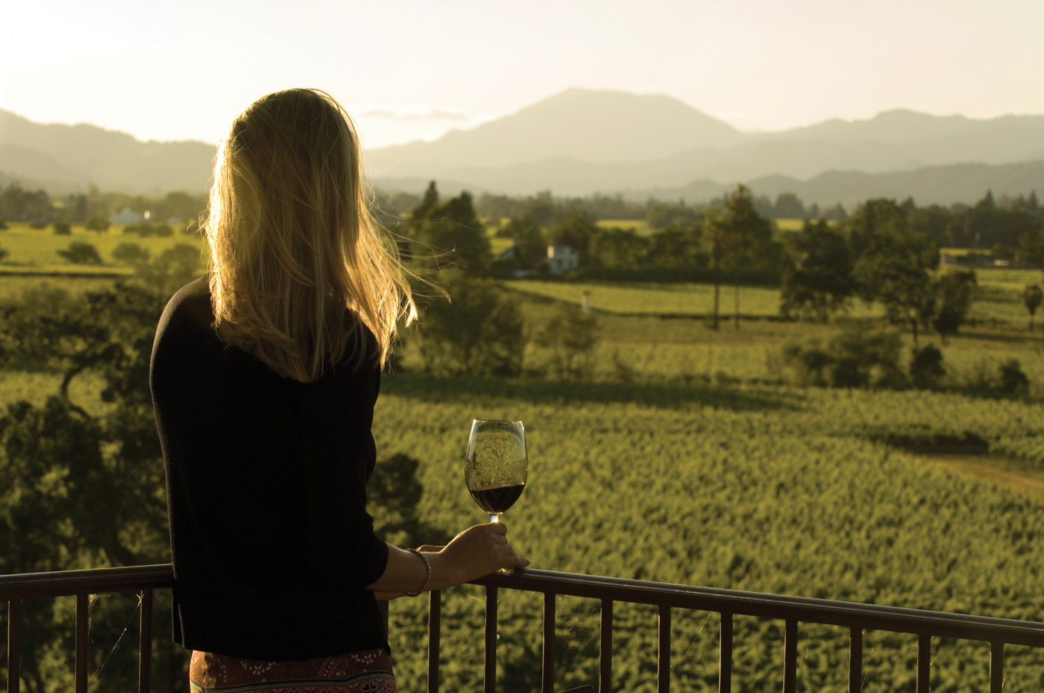 View of Mount St. Helena from Cardinale Winery.