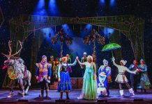 "The Broadway-style adaptation of ""Frozen"" aboard the Disney Wonder."