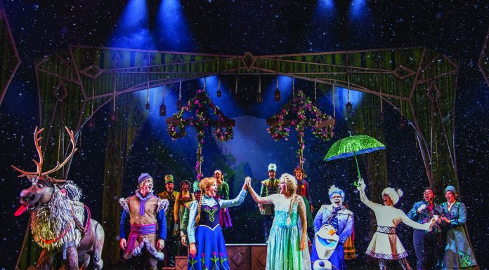 "The Broadway-style adaptation of ""Frozen"" aboard the Disney Wonder."