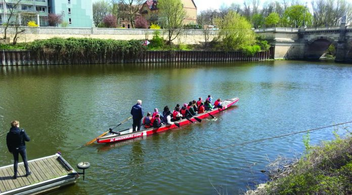 Dragon boat race on the Elbe River.