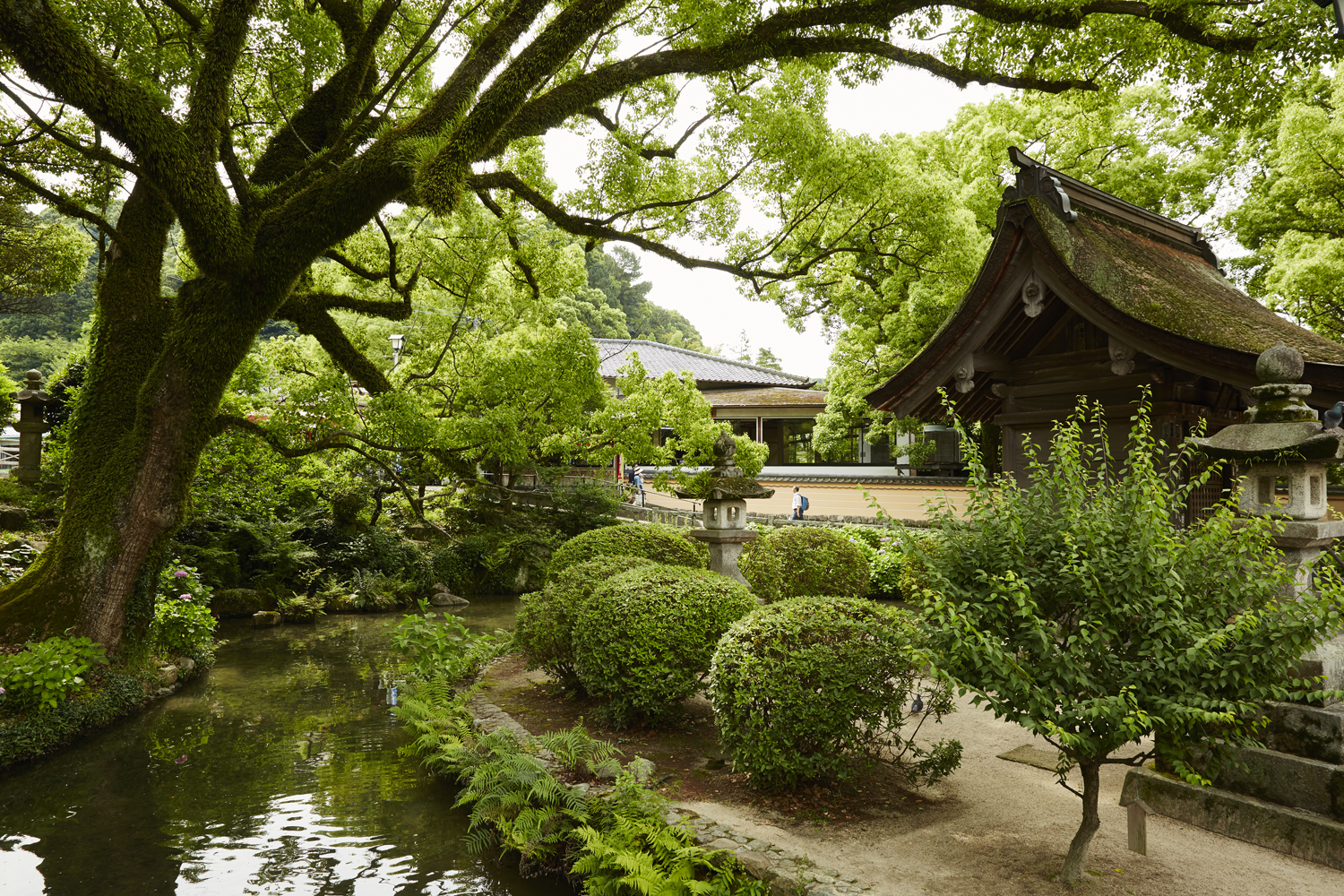 Princess Cruises offers an array of itineraries in Japan.