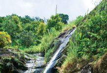 Concord Falls in Grenada.