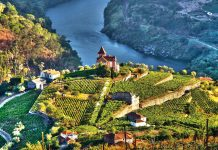 The Douro River Valley in Portugal.