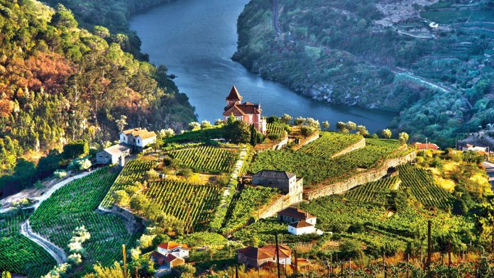 TheDouro River Valley in Portugal.