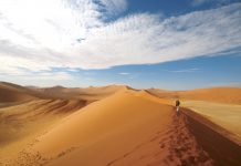 Intrepid Travel's 2017 line-up of family-themed itineraries includes a 19-day tour of Namibia and Botswana.
