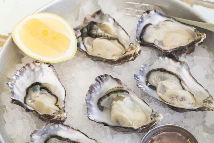 There are many ways for visitors to get their oyster fix in Auckland, New Zealand.