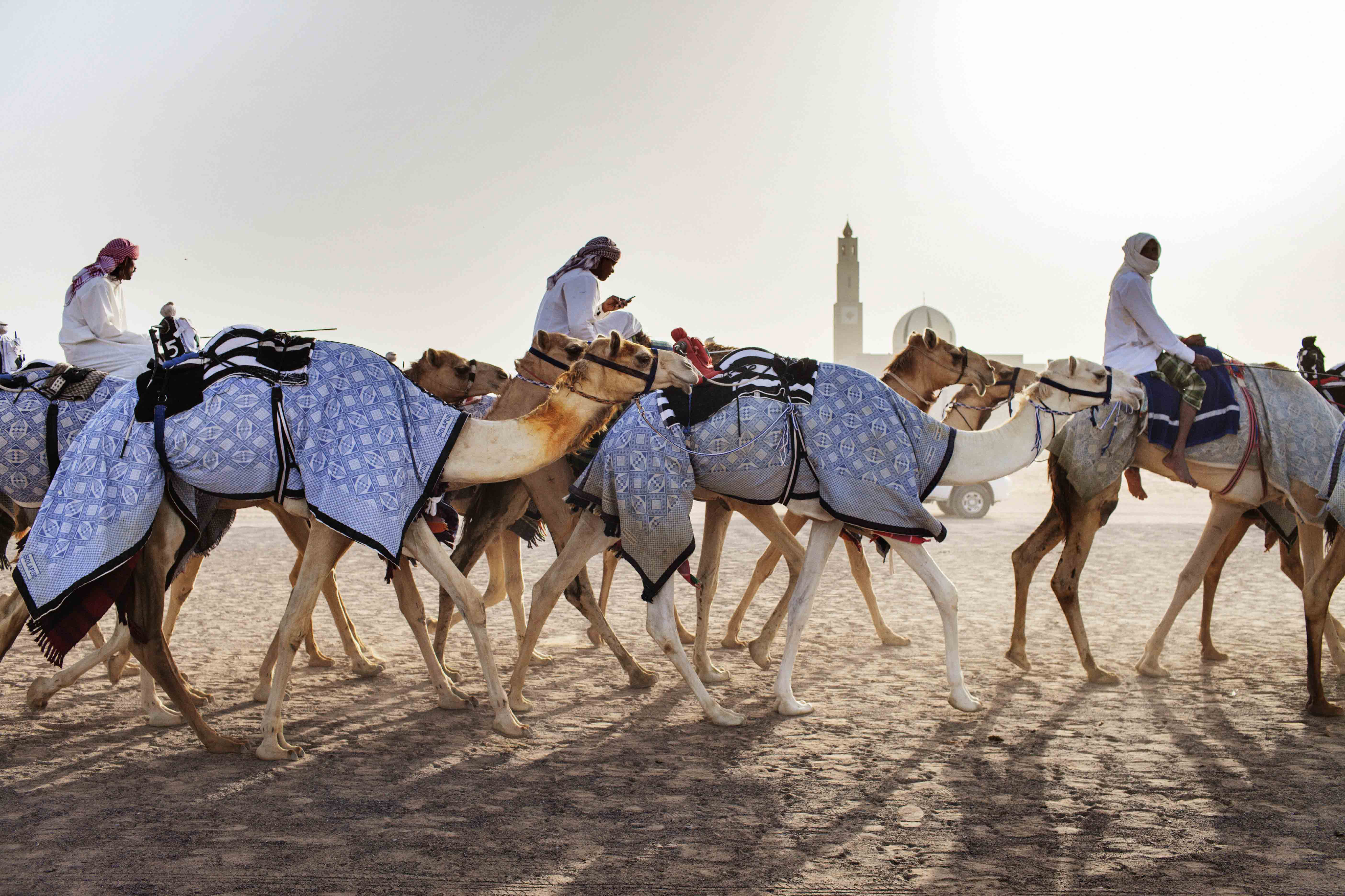 Visitors to Dubai will have the opportunity to ride camels.