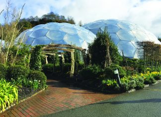 Eden Project in Cornwall. (Michelle Arean)