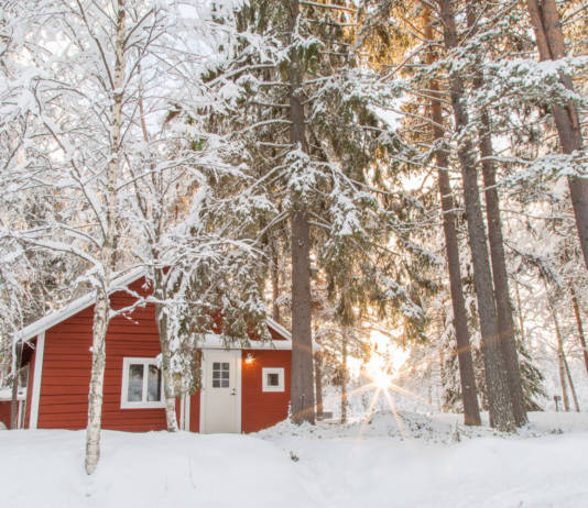 Pure Lapland's new all-inclusive Loggers Lodge located in the middle of a boreal forest.