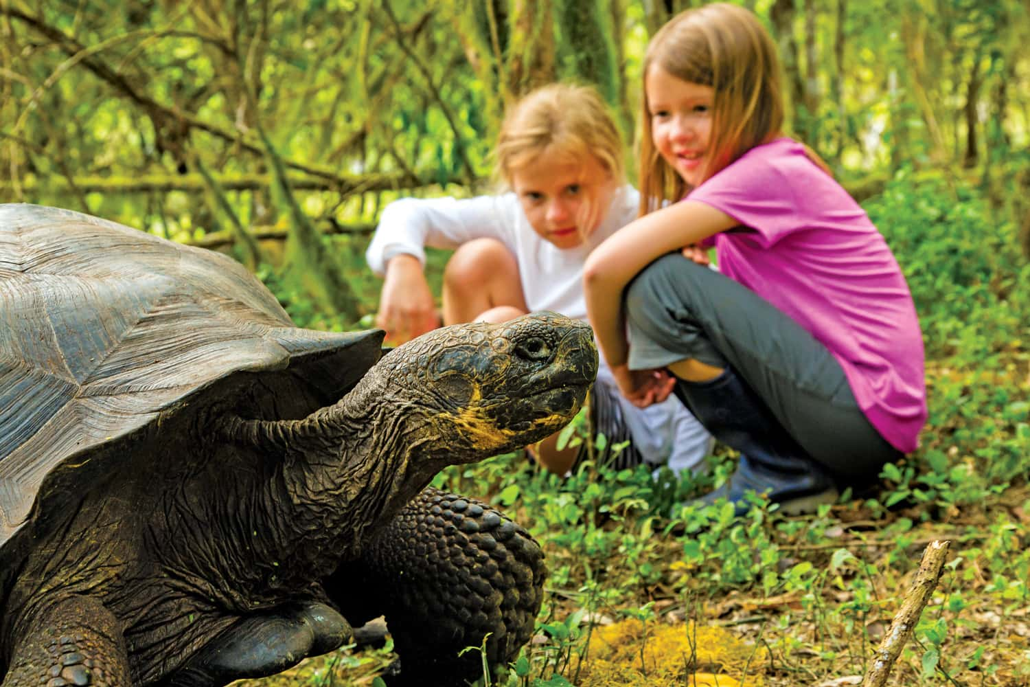 Lindblad Expeditions-National Geographic is celebrating 50 years of exploring the Galapagos with the launch of the National Geographic Global Explorers program.