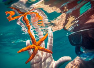 G Adventures' Summer Escape Sale include the 8-day Sailing Croatia: Dubrovnik to Split tour where guests can snorkel. (Photo credit: G Adventures, Inc.)
