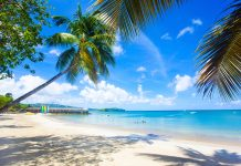 Travel agents can choose from Elite Island Resorts' collection of Caribbean beachfront resorts for an all-inclusive FAM.
