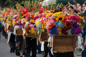 Silleteros carrying their silletas decorated with flowers depicting the silletero's history, land, and culture for The Medellin Flower Fair in August. (Photo credit: Medellin.travel)