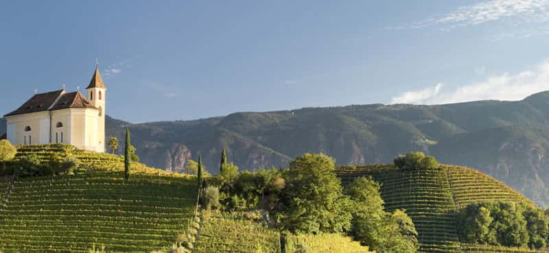 The church of St. Zeno and Apollonia can be found on a hilltop covered with vineyards.