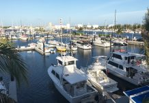 Guests staying at The Perry Hotel Key West have access to the onsite Stock Island Marina, which makes it easy to enjoy a plethora of water activities.