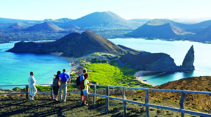 Celebrity Cruises' Galapagos voyages are ideal for a multi-gen vacation.
