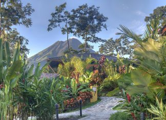 Costa Rica's Arenal Volcano peeks out through the trees at Nayara Springs.